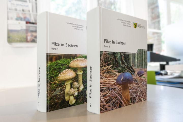 Doppelband »Pilze in Sachsen«